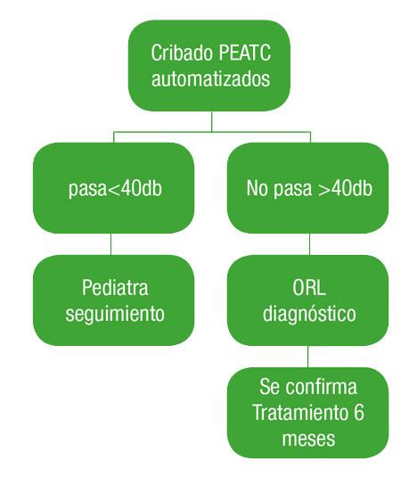 proceso-deteccion-auditiva-recuadro-GA